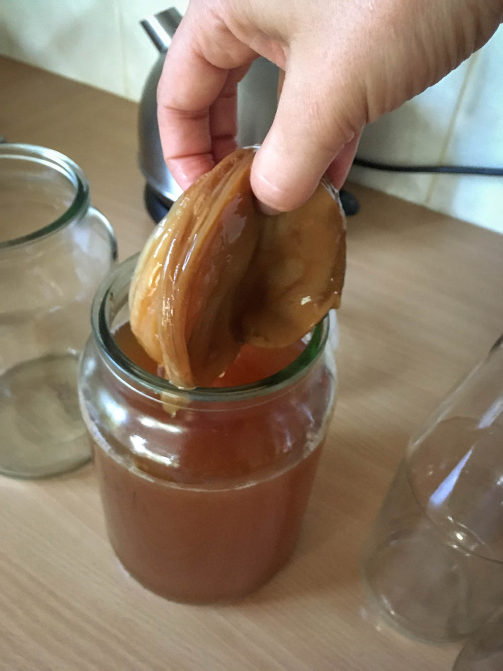 SCOBY isn't pretty, but it is magical.