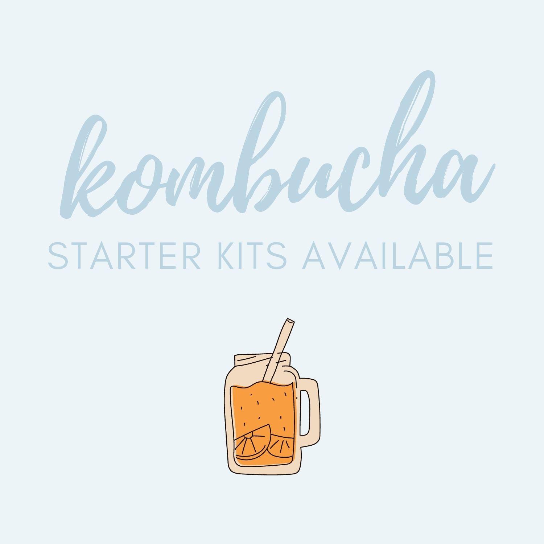 Kombucha starter kits