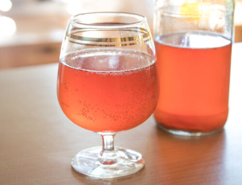 How to make kombucha at home: delicious, bubbly and great for your gut