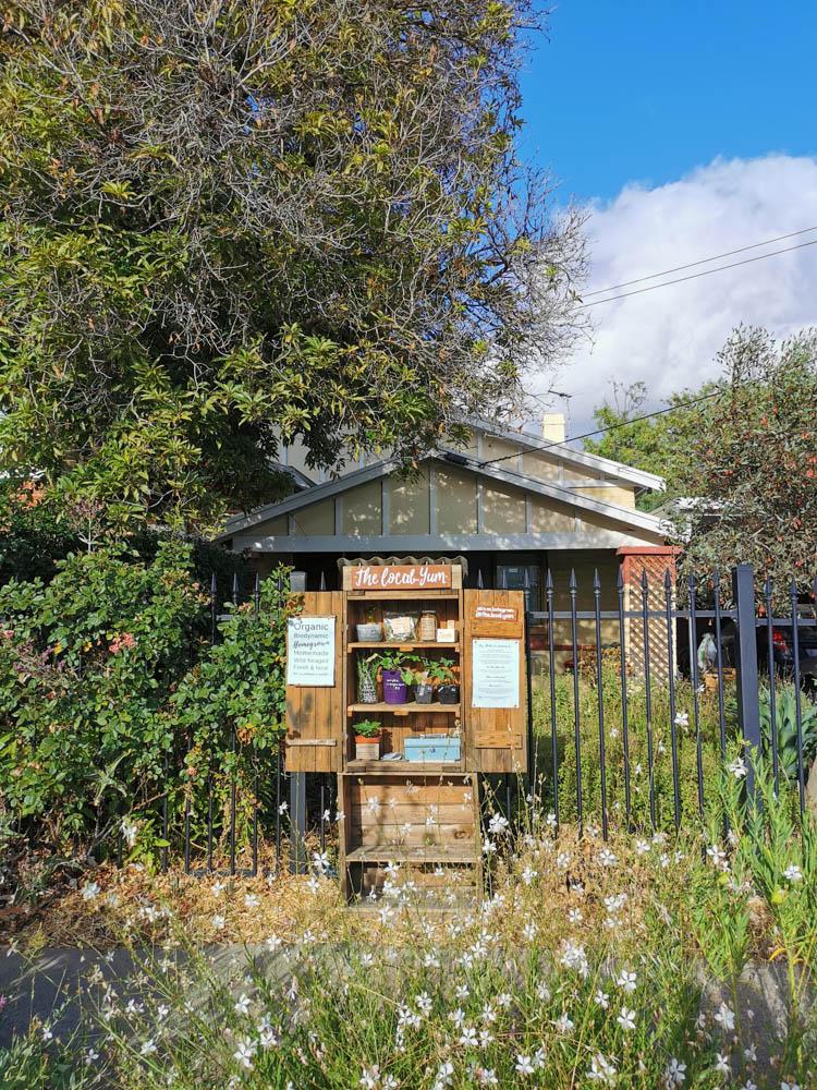 Our Adelaide honesty stall in full morning sun.