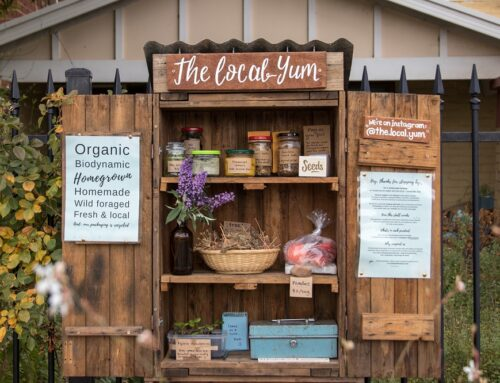 How to make an urban roadside honesty stall for veggies, flowers, seedlings + more