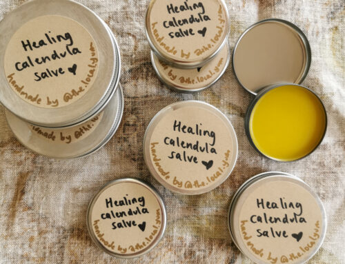 Make your own healing calendula + lavender salve (with no special equipment)
