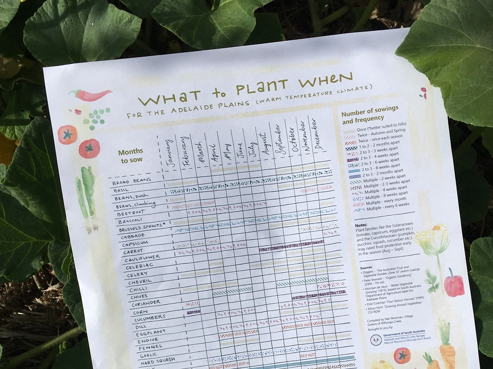 What to Plant When poster - Adelaide Plains1